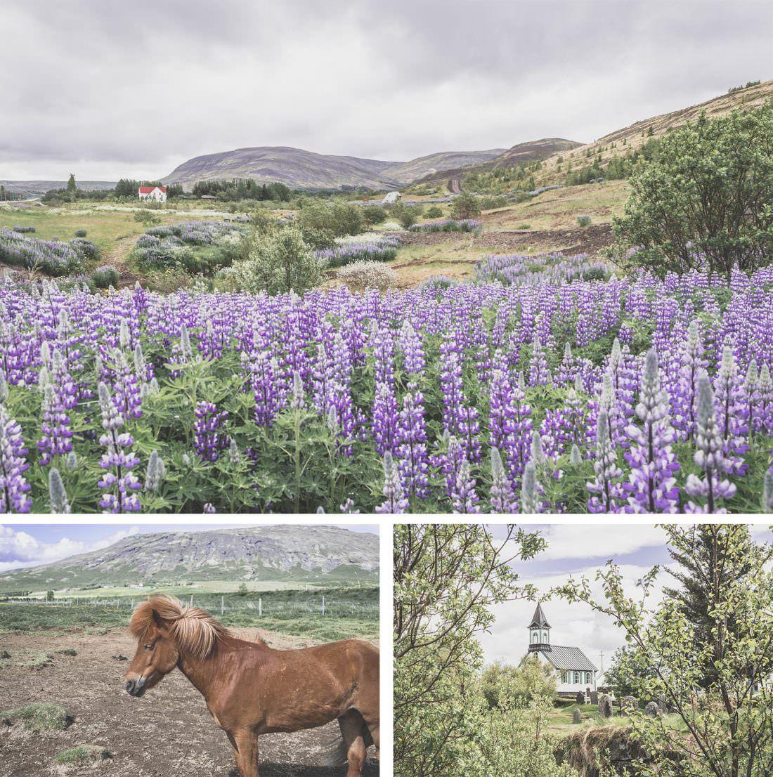 Islande | Road Trip Guide Pratique | Le parc de Thingvellir dans le cercle d'or