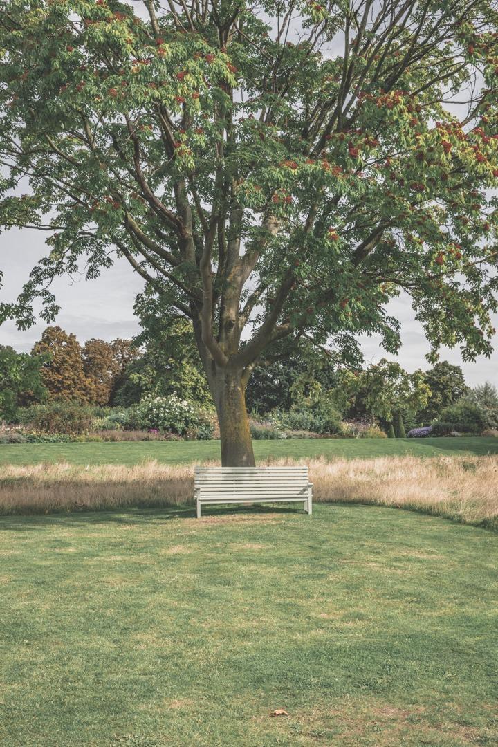 Kensington gardens / Londres