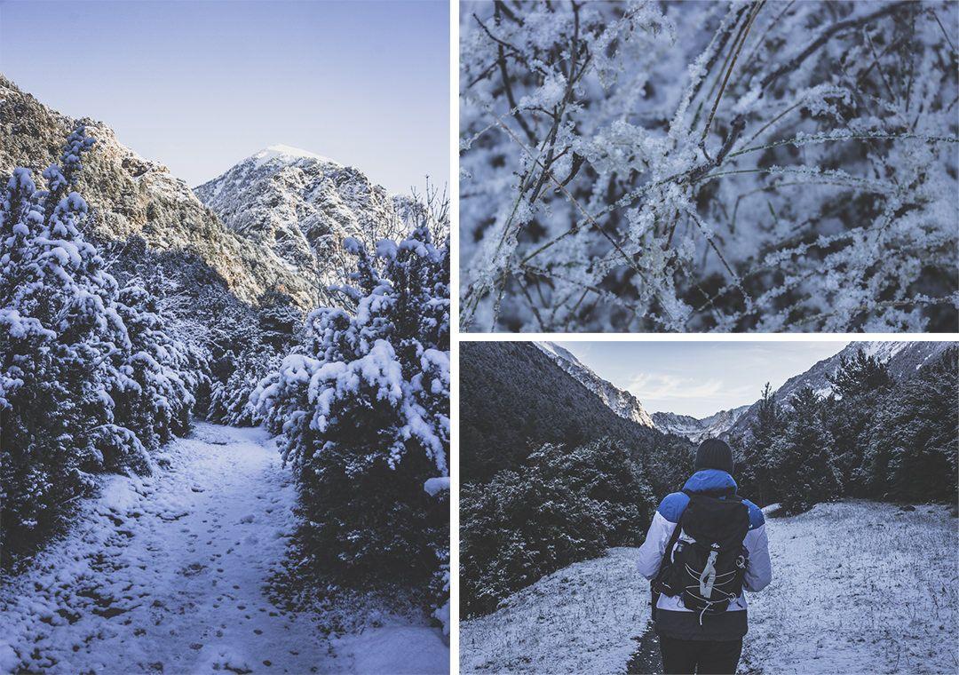 Espagne • Catalogne • Pyrénées • Randonnées au Parc Nacional d'Aigüestortes i Estany de Sant Maurici • Randonnée côté Boì
